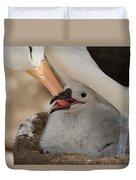 Black-browed Albatross Duvet Cover