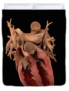 Heart Anatomy Duvet Cover