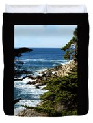 17 Mile Drive Iv Duvet Cover