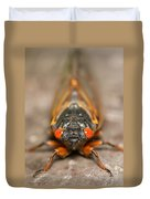 17-year Periodical Cicada IIi Duvet Cover