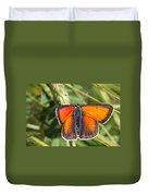 18 Balkan Copper Butterfly Duvet Cover