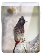 Birds Of The World Duvet Cover