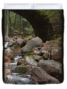 1917 Carriage Road Bridge Of Acadia Duvet Cover
