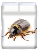 Cockchafer Or June Beetle  Duvet Cover