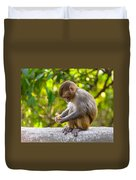 A Baby Macaque Eating An Orange Duvet Cover