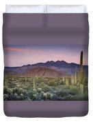 A Desert Sunset  Duvet Cover