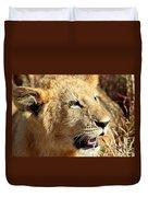 African Lion Cub Portrait Duvet Cover