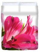 Alstroemeria Flowers Against White Duvet Cover