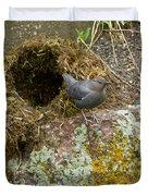 American Dipper And Nest   #1487 Duvet Cover
