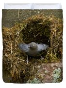 American Dipper And Nest   #1538 Duvet Cover