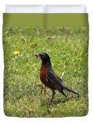 American Robin Gathering Worms Duvet Cover