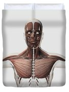 Anatomy Of Male Muscular System, Side Duvet Cover