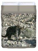 Arabian Leopard Panthera Pardus 1 Duvet Cover