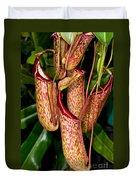 Asian Pitcher Plant Duvet Cover