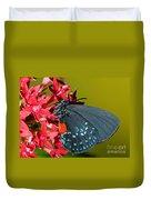 Atala Butterfly Duvet Cover