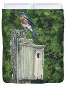 Backyard Bluebird 2 Duvet Cover