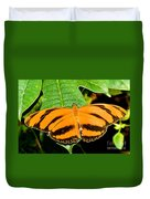 Banded Orange Butterfly Duvet Cover