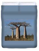 baobabs of Madagascar Duvet Cover