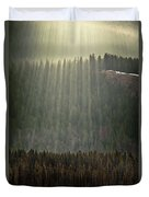 Beams Of Sunlight Shine Over Old Growth Duvet Cover