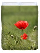 Beautiful Poppies 4 Duvet Cover