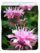 Bee Balm Named Panorama Pink Duvet Cover