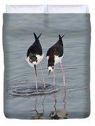 Black-necked Stilt Duvet Cover