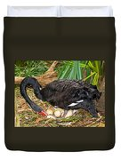 Black Swan At Nest Duvet Cover