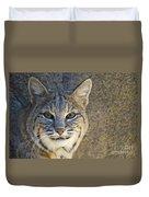 Bobcat Duvet Cover by William H. Mullins