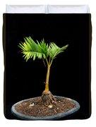 Bonsai Palm Tree Duvet Cover