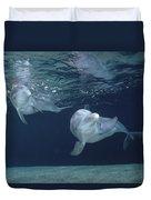 Bottlenose Dolphin  Pair Hawaii Duvet Cover