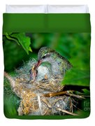 Broad-billed Hummingbird And Young Duvet Cover