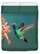 Broad-billed Hummingbird At Ocotillo Duvet Cover