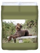 Brown Labradoodle Duvet Cover