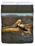 Brown Pelican In Flight Duvet Cover