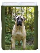 Bullmastiff Dog Duvet Cover