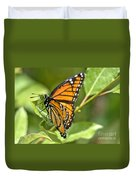 Busy Butterfly Duvet Cover