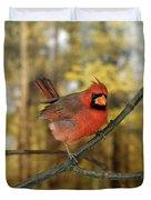 Cardinal Rouge Cardinalis Cardinalis Duvet Cover
