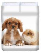 Cavalier King Charles Spaniel Pup Duvet Cover