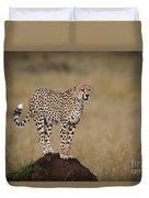 Cheetah On Termite Mound Duvet Cover