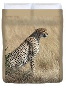 Cheetah Searching For Prey Duvet Cover