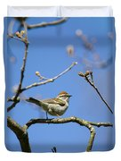 Chipping Sparrow Perched In A Tree Duvet Cover
