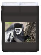 Colobus Monkey Duvet Cover