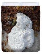 Coral Sands Duvet Cover