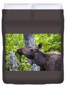 Cow Moose Duvet Cover
