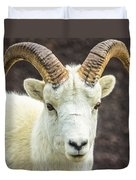 Dall Sheep Duvet Cover