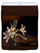 Desert Easter Lily Duvet Cover by Robert Bales