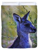 Eastern Grey Kangaroo Duvet Cover