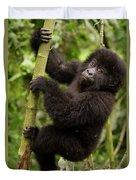 Endangered Mountain Gorillas Habitate Duvet Cover