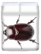 European Rhinoceros Beetle Female  Duvet Cover