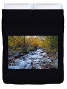 Fall At Big Pine Creek Duvet Cover by Cat Connor